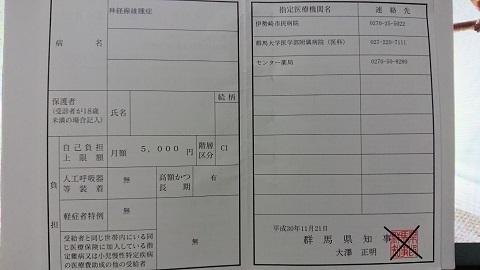 特定医療費2019-2 - コピー.JPG